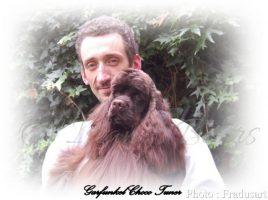 Carloni Franck artiste peintre et webmaster